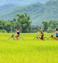 Vietnam bike tours 10 days